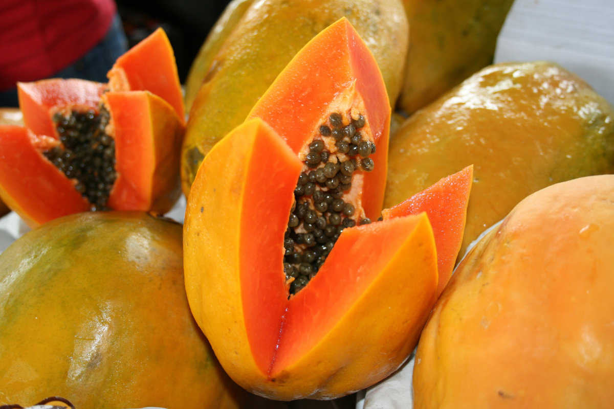 Papain Powder(Papaya Extract)